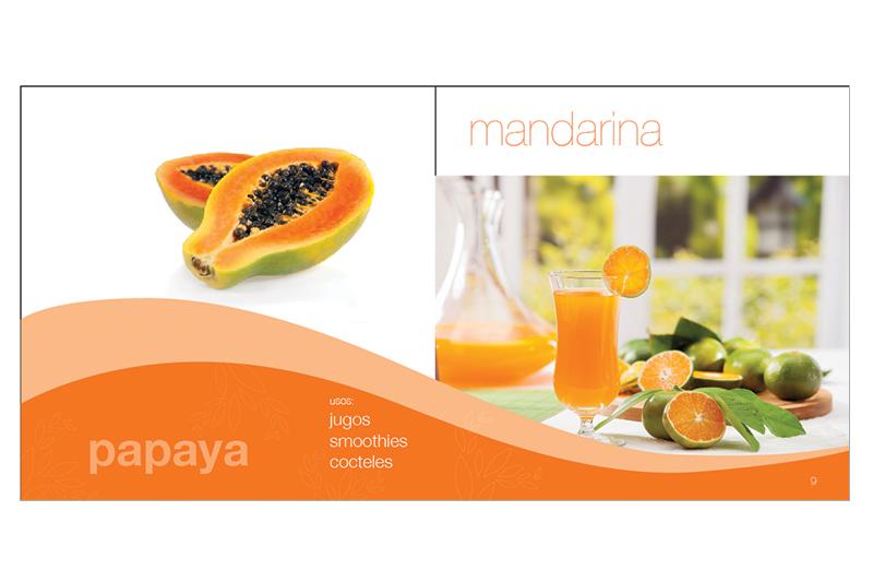 Fruttecos pagina sección brochure