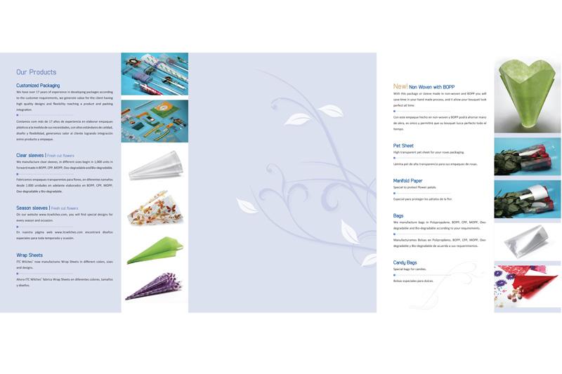 ITC Wilches brochure digital interior