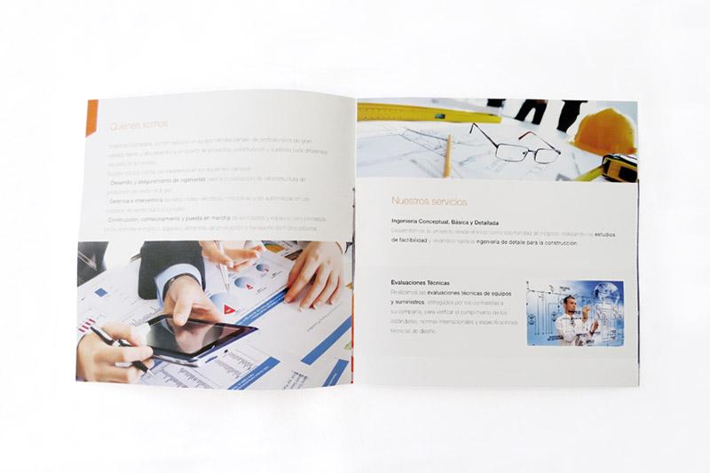 prociem brochure interior